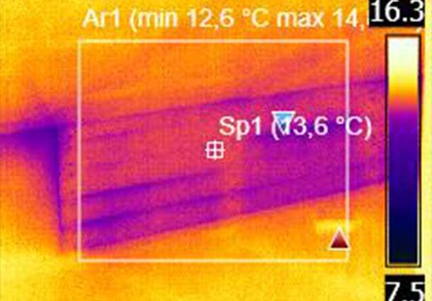 Vaizdas atliekant tik termoviziją